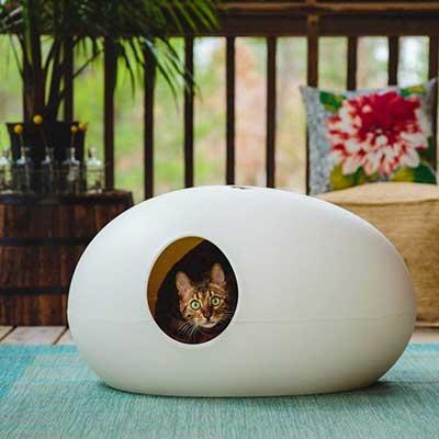 maison de toilettes design pour chat